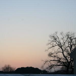2015・3・21ハウステンボスにて・・・夕焼けの始まりの空。