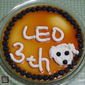 3歳のお誕生日のお祝いに・・・。