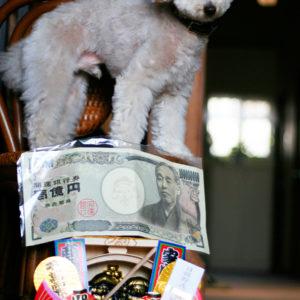 えべっさんで一億円札をもらったよ♡(2016・1・10)