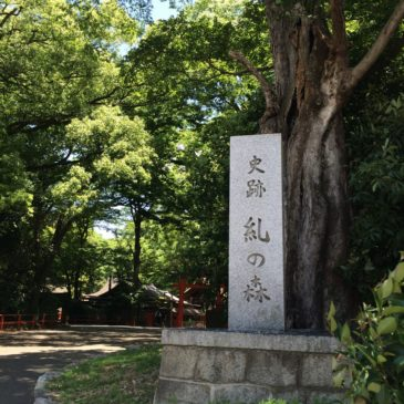 糺の森・下鴨神社へ
