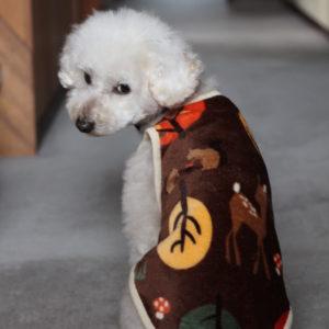 久々に愛犬の服。温かいフリース生地で。姉・作。