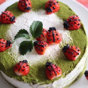 父の誕生日のお祝いケーキは、春らしくてんとう虫で♡