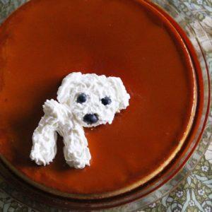 レオのうちの子記念日のスイーツは、シンプルなジャンボプリン♡